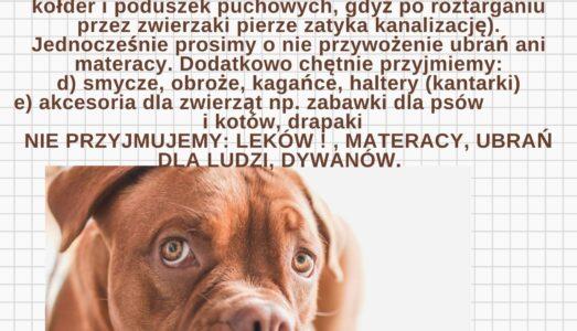 Pomóżmy zwierzakom!